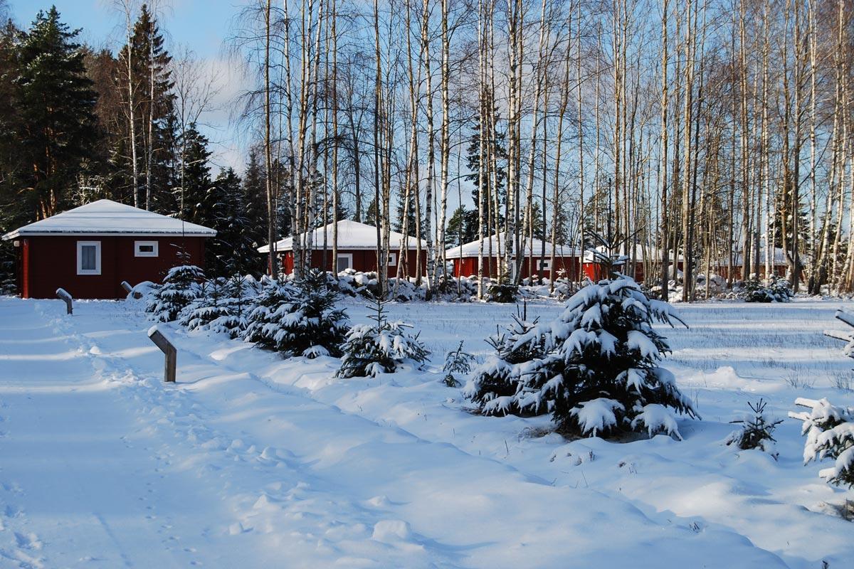 Wintervieuw Hamgården