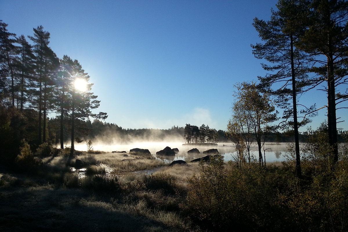 Early morning Kråkvattnet