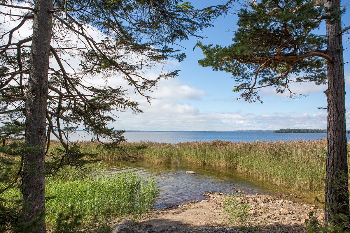 Sjösidan Hamgården